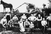 bolgárkertész, marosvásárhely, kolozsvár, erdély