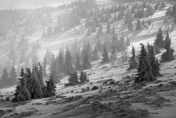 fényképezés télen